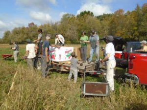 Loading squash in the field