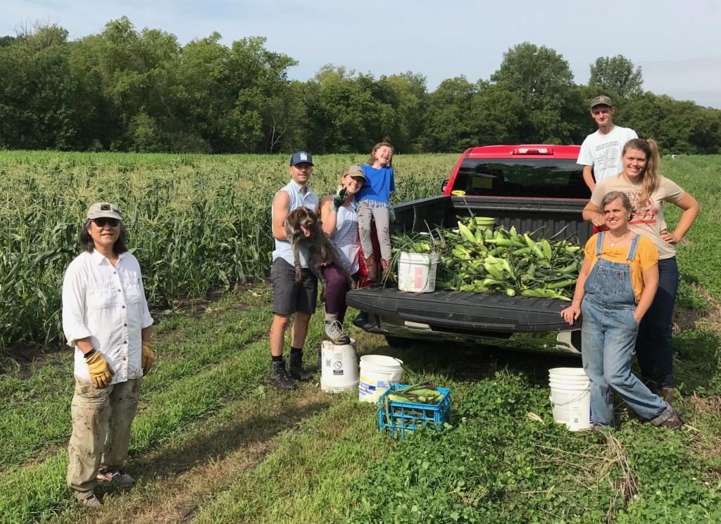 Volunteer Corn Pickers with corn